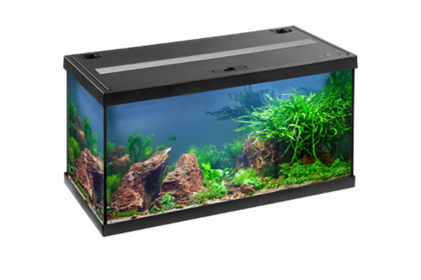 Аквариум Eheim Aquastar 54 LED черный